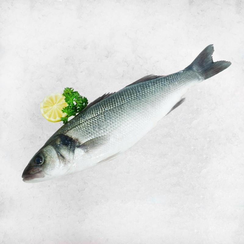 Seabass Whole Fish