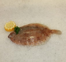 Lemon sole whole