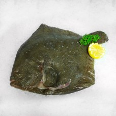 Whole fish flat product categories quayside fish for Turbot fish price