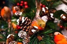 Other Seasonal Ideas